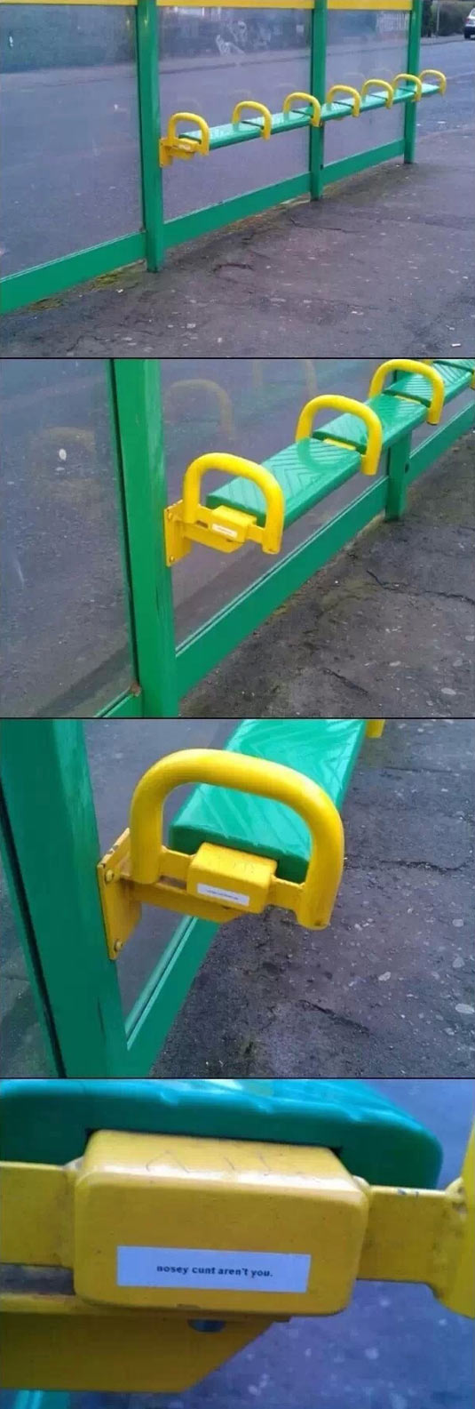 funny-bench-bus-stop-curious