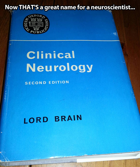 A great name for a neuroscientist…