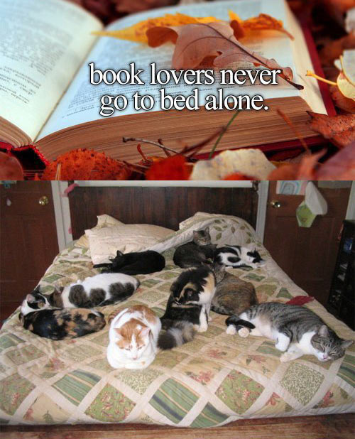 Book lovers are never alone…
