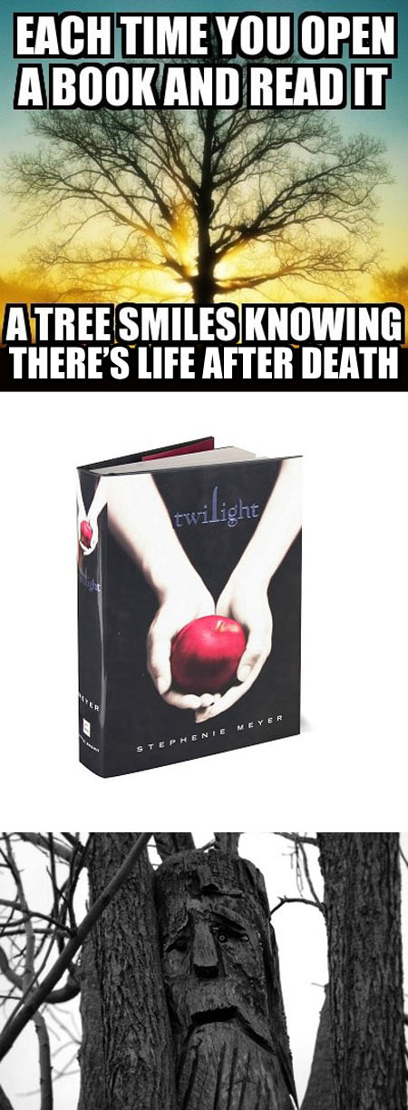 funny-book-read-life-after-Twilight