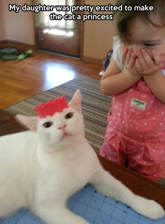 Princess Cat…