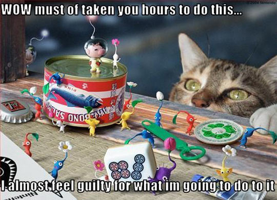 funny-cat-remorse-little-toys