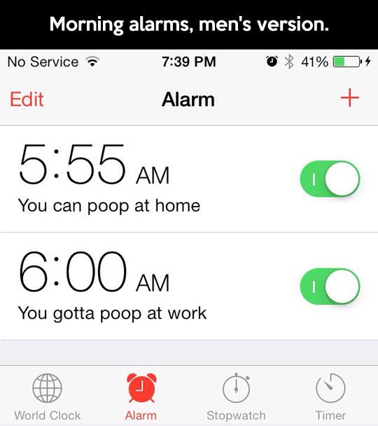 Morning alarms…