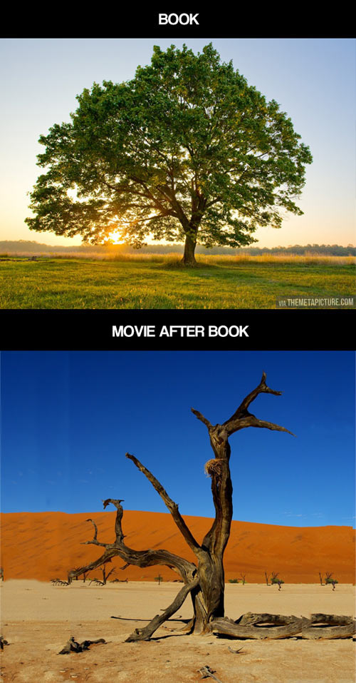 When books become movies…