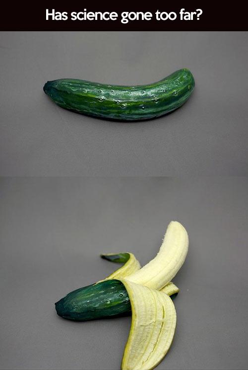 funny-cucumber-banana-science