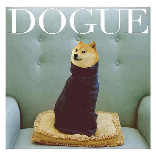 The magazine that every stylish dog should read…