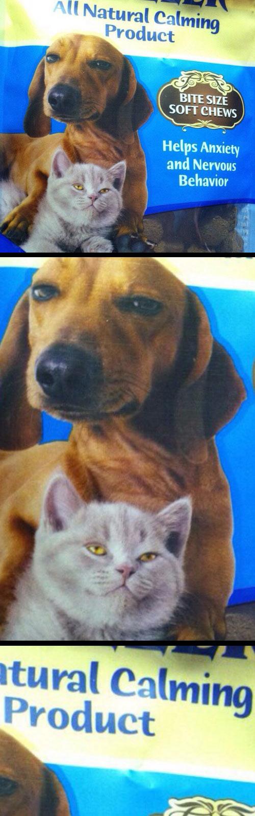 funny-dog-cat-calming-food