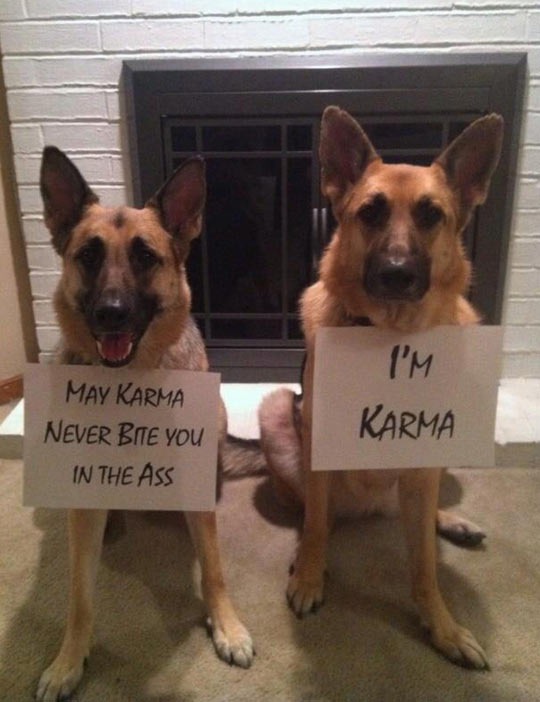 May karma never bite you…