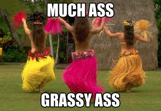 funny-grass-bad-Spanish-much