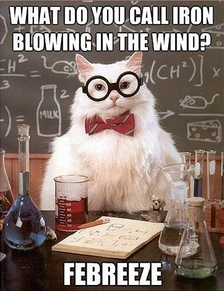 funny-iron-chemical-cat
