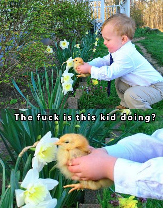 funny-kid-chick-garden-flower-feeding