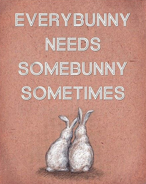 Some bunny sometimes…