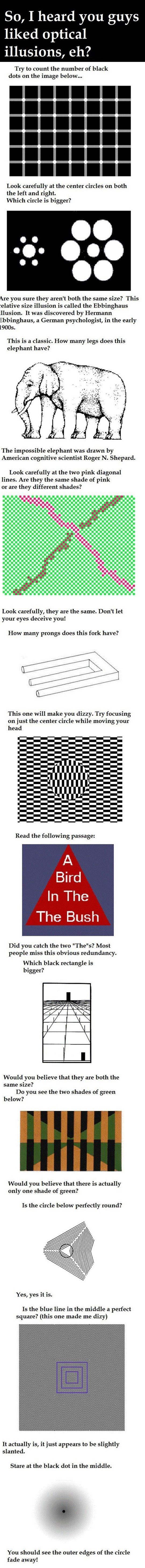 I heard you liked optical illusions…