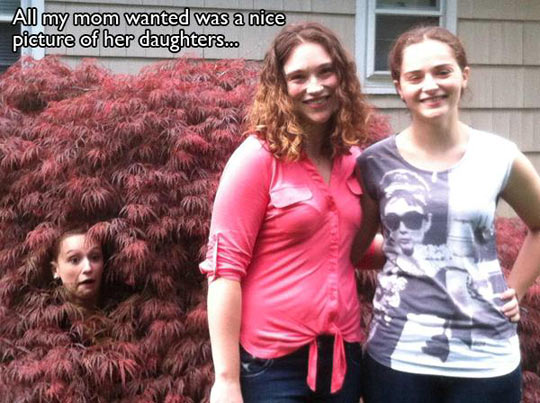 Normal picture gets interrupted…
