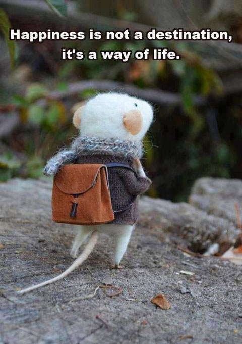 funny-quote-happiness-life-mouse