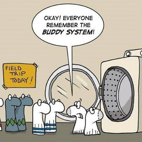 funny-socks-buddy-system