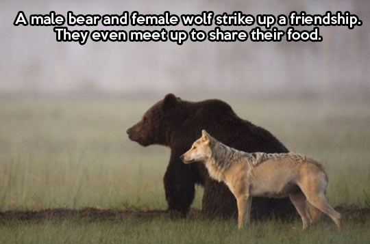 The best of friendships…