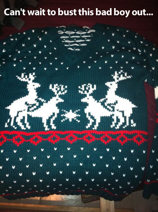 funny-sweater-deer-Christmas
