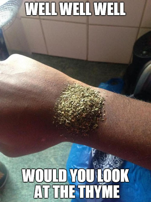 Wasting thyme…