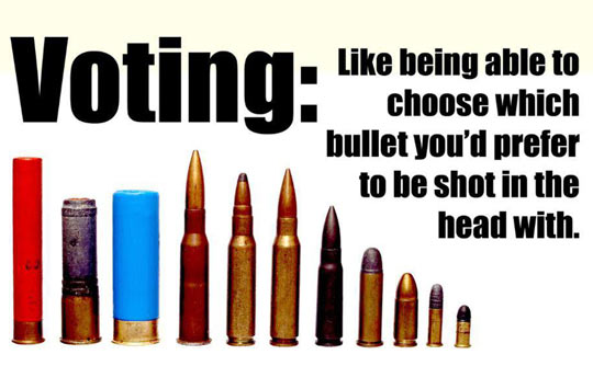 My view on voting…