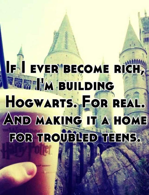 If some day I become rich…