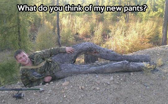 Do you like my new pants?