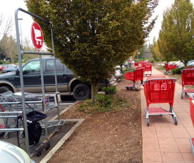 12 Oh, Please Don't Say I Should Take the Cart There!