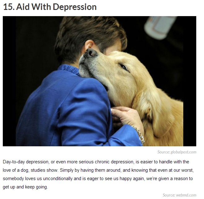 20 Reasons Why Getting a Dog Can Change Your Life 15