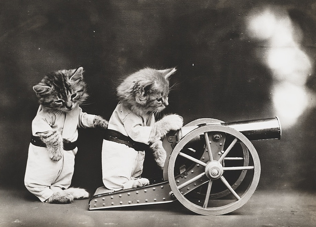 28 Old School Photos of Dressed Up Pets26