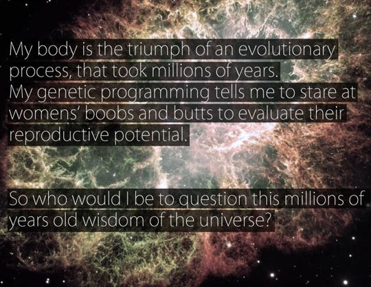 Don't question the Universe
