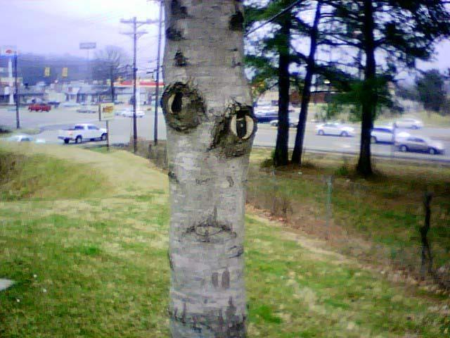 Finding Wierd Faces In Normal Places- 15