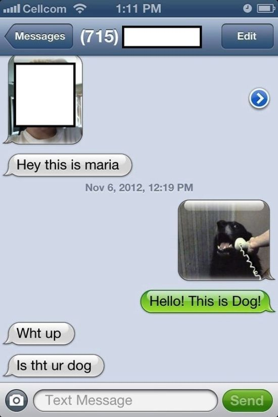 Funny Text Message Replies- 5