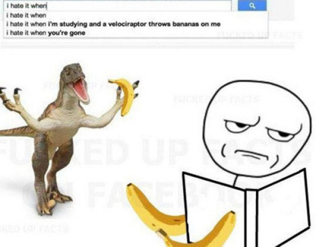 The Most Crazy Google Search Suggestions Of All Time 4