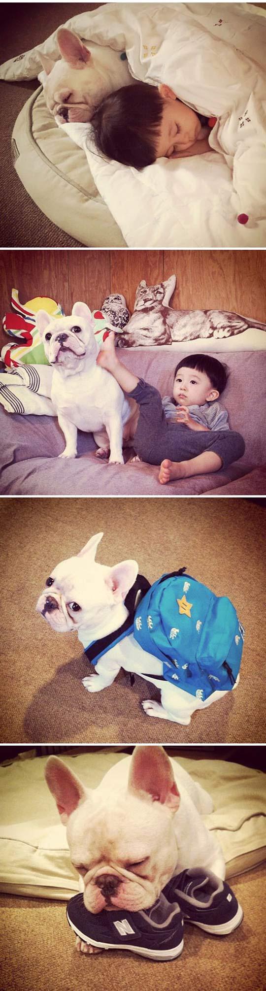 cool-Asian-kid-sleeping-dog