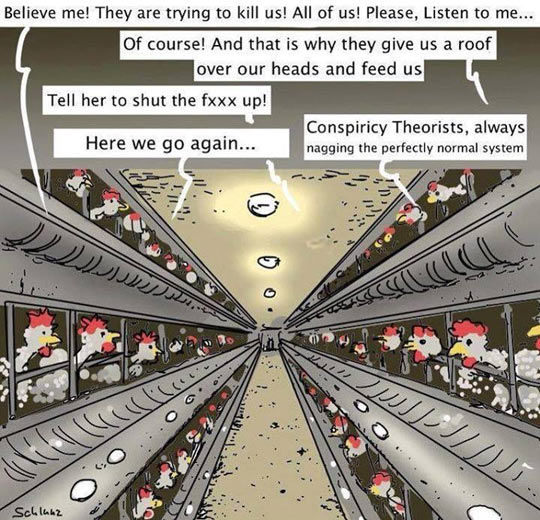 cool-chicken-metaphor-conspiracy-Government