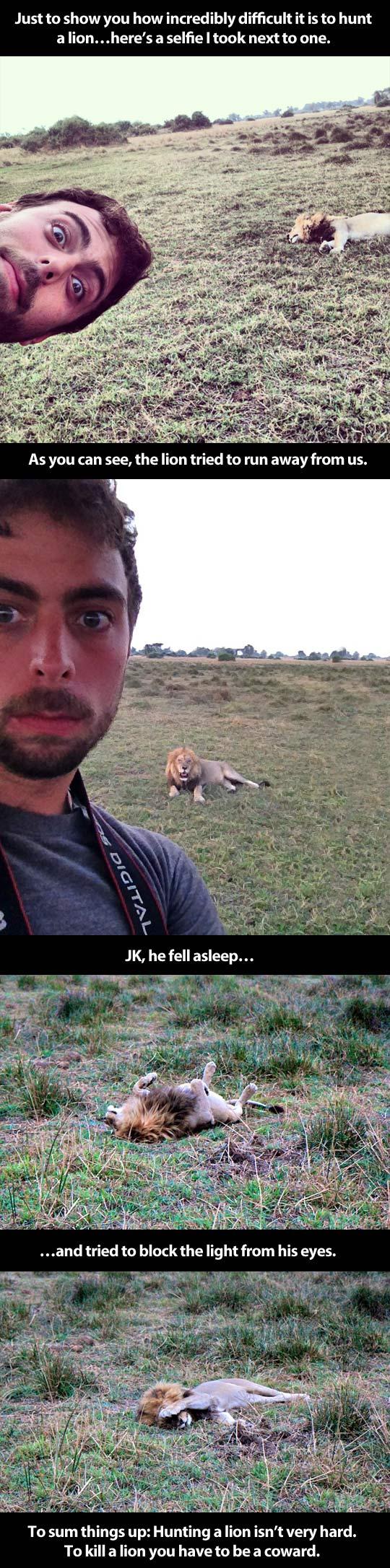 cool-lion-sleeping-Africa
