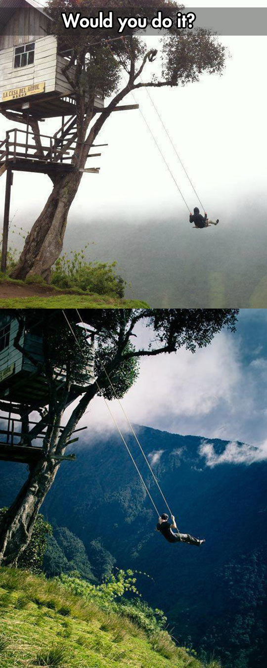 I dare you to swing there…