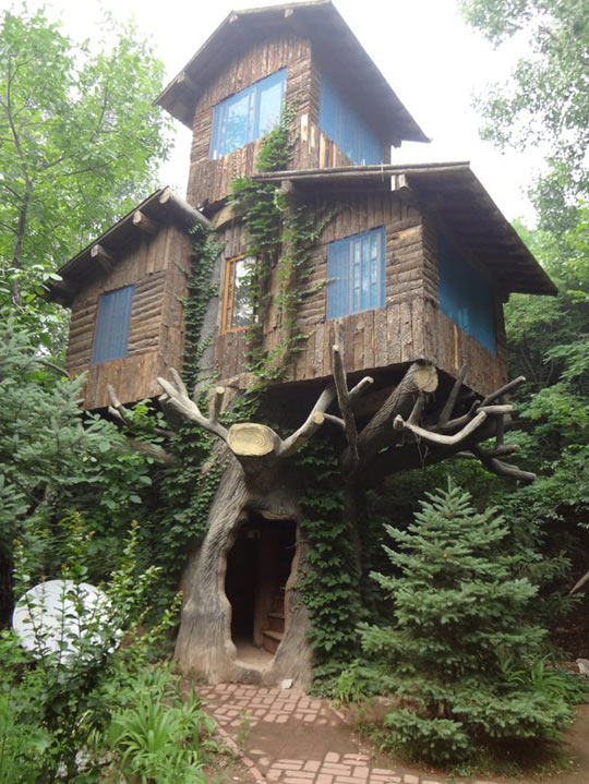 biggest house in the world 2013 unique biggest treehouse in the world 2013 largest tree house