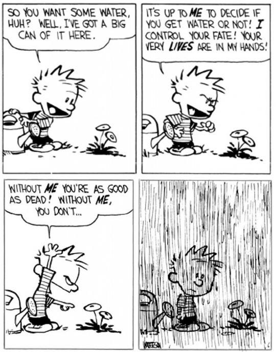 funny-Calvin-Hobbes-flower-water-rain