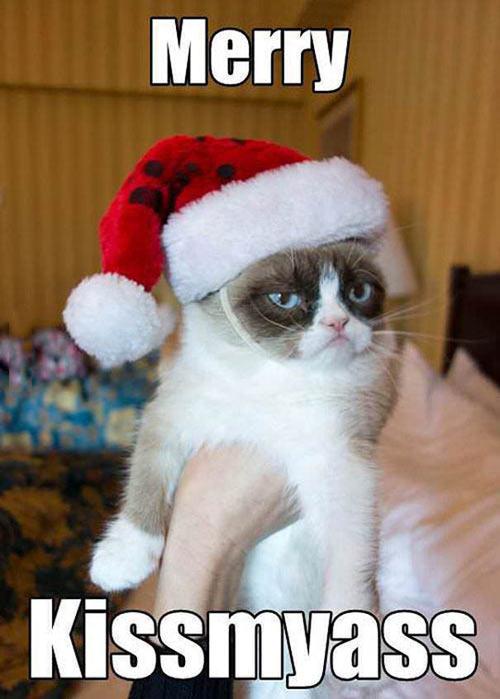 funny-Grumpy-cat-hat-Christmas-Santa
