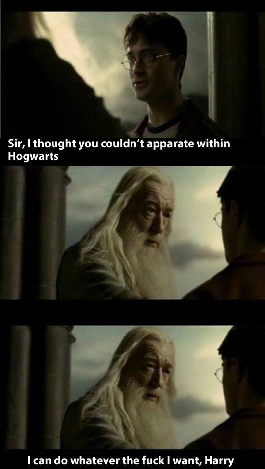 Dumbledore doesn't sugarcoat it…