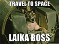 The first dog in space
