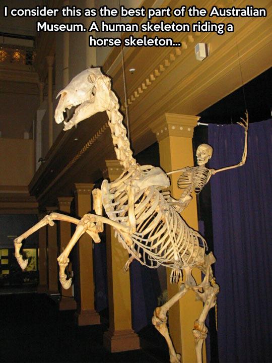 Australian Museum…