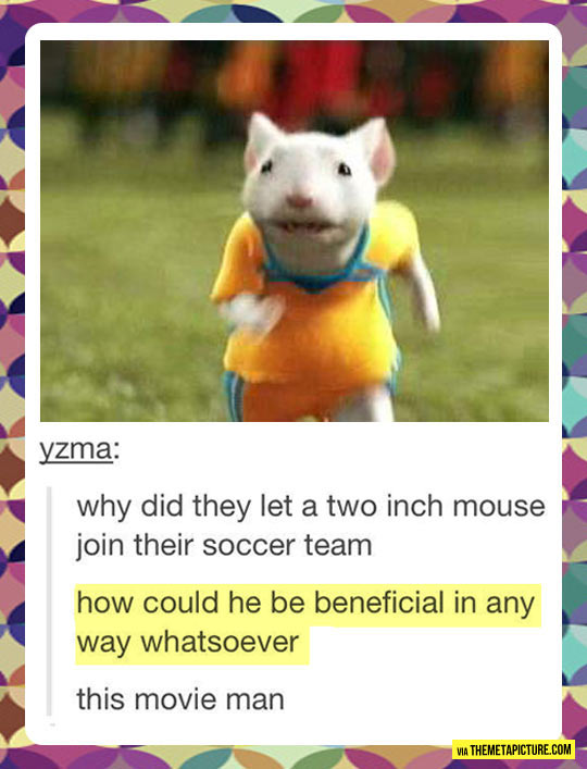 Stuart Little logic…