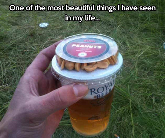 Beer of your dreams…