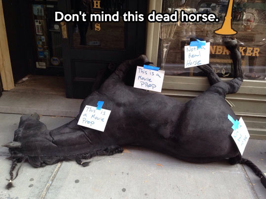 Not a real horse…