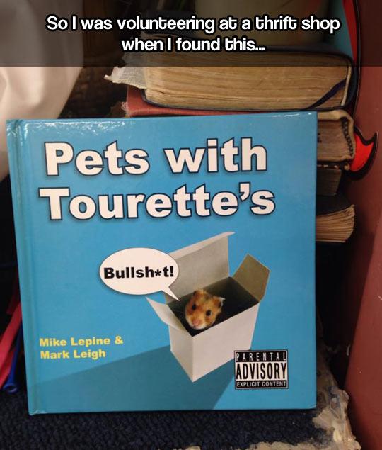 Pets with Tourette's…