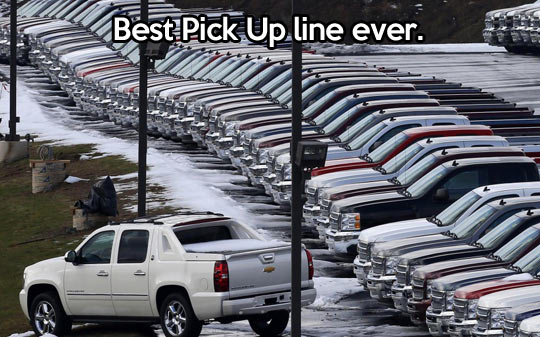 Cool pick up line…
