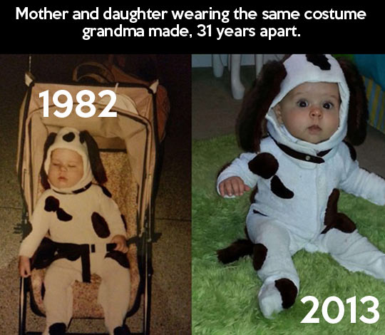 funny-costume-cow-mother-daughter