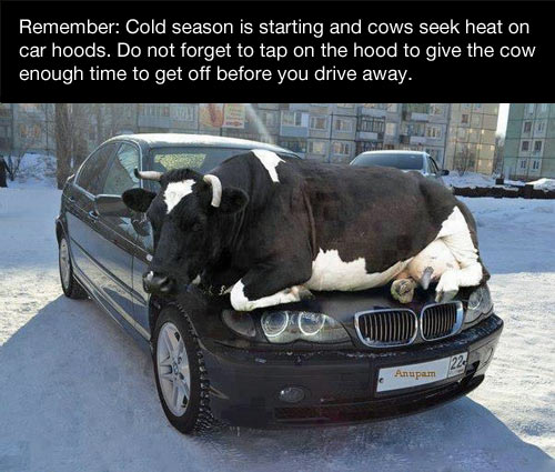 This winter, just remember…